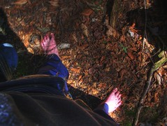 HDR barefoot in the forest