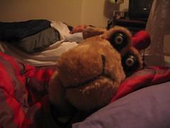 humphrey having difficulty sleeping