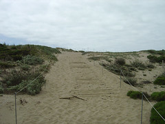 Way to Moss Landing Beach