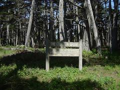 Crocker Grove - Forest & Sign