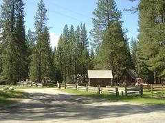 Yosemite - Wawona