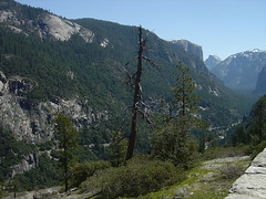 Yosemite - Look into the Valley
