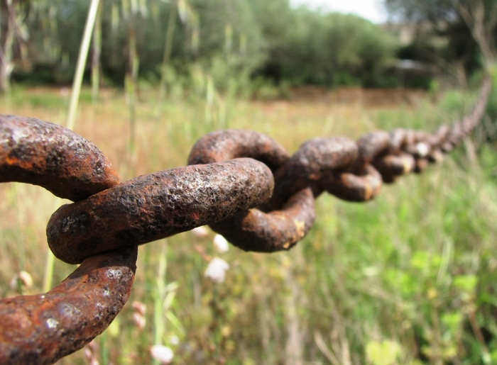 Oxidacion en cadena