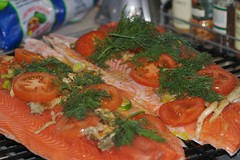 Salmon ready for the Egg