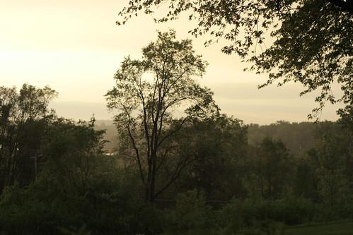Sun and rain make mist