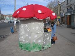 Mushroom shaped kiosk