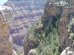 Mather Point VI