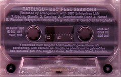 Datblygu - Peel Sessions