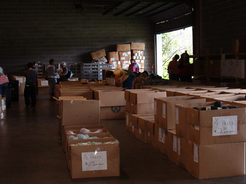 Boxes upon boxes of yarn