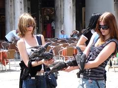 聖馬可廣場餵鴿子_009