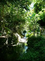 ferndell stream