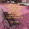 44663618410_0544a7968f_t