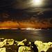 Gato Preto à Noite [Moonlit Cat]
