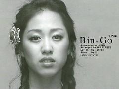 Visualisation of Bin-Go HD.