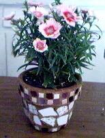 Pink Flowerpot