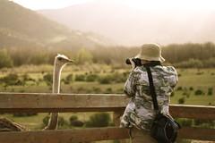 erik shoots ostrich
