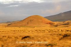 Cone vulcanico