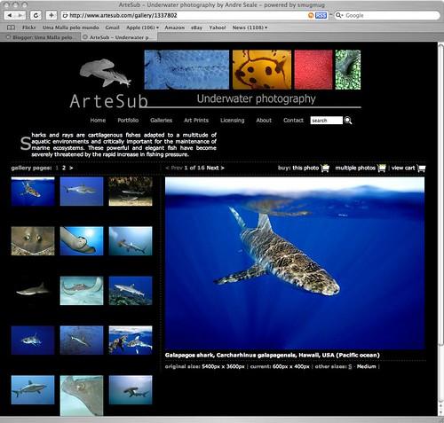 Artesub screen shot