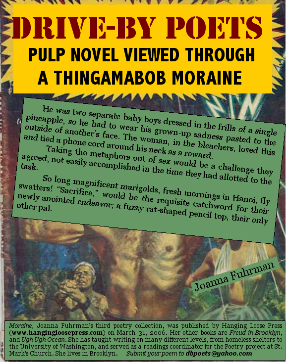 Pulp Novel Viewed Through A Thingamabob Moraine by Joanna Fuhrman