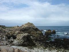 Restless Sea - Coast