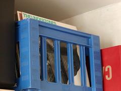 kassen med klenodierne