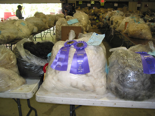 Grand Champion Fleece