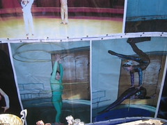 Photo of circus