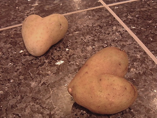 potato love