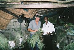 Rabbit Farmer in Haiti