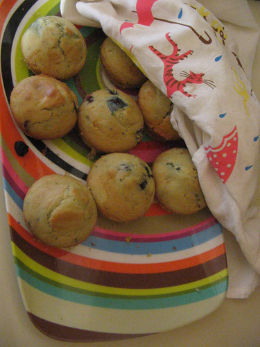 hugh's blueberry muffins