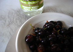 blackcurrants and vodka