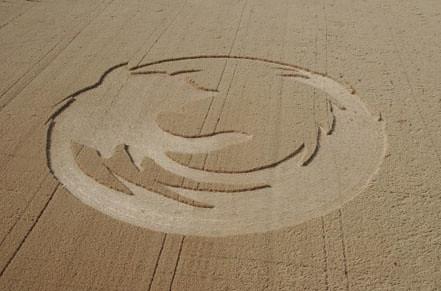 Firefox Crop Circle 1