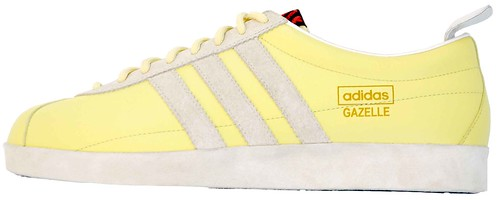 gazelle-yellow-2