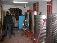 Inside Ficaria Winery