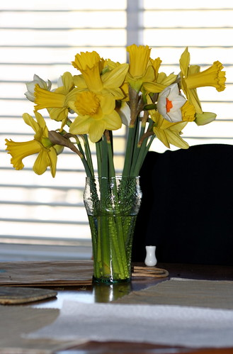 99¢ daffodils