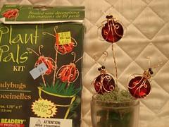 threeplantbugs