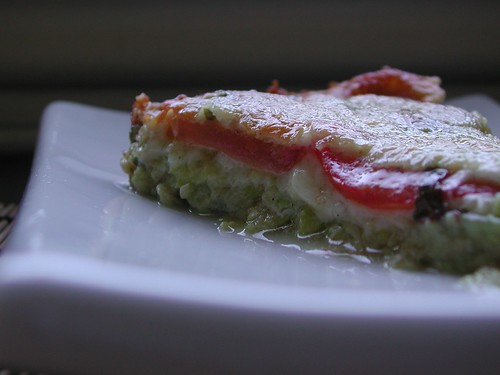Zucchini Fontina Tomato Tart