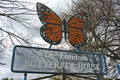 The London Butterfly House