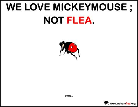 I hate fleas