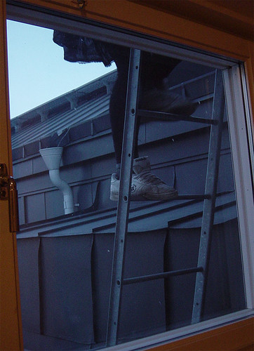 takklättrare :: roof climbers