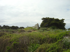 Spanish Bay - Backlands