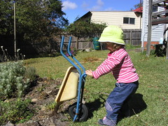 M learning how to use a wheelbarrow