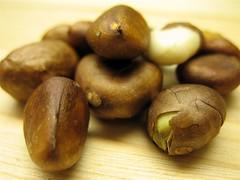 Seeds-a-Beckoning