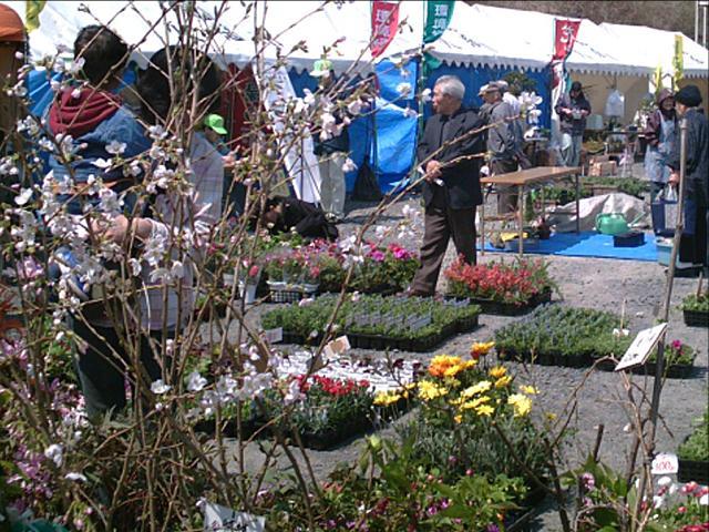 market day060428a