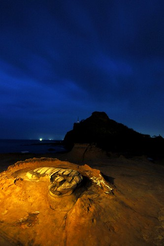 Footprint Rock