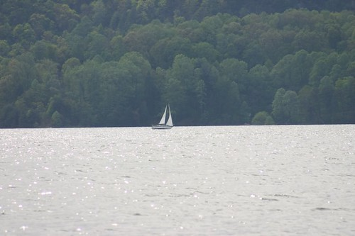 Sail Boat at Watauga Lake