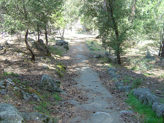 Yosemite - Paved Trail