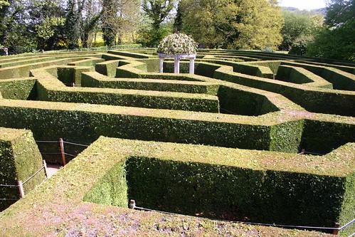 Hedge Puzzle maze