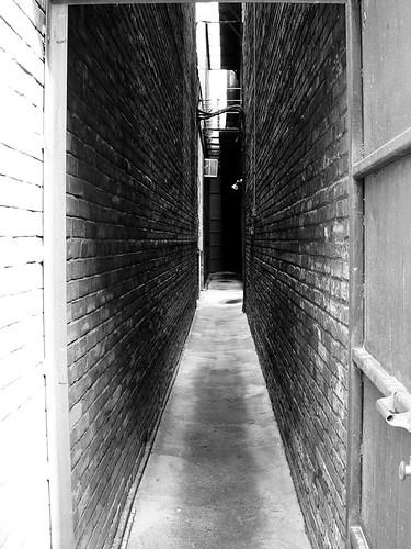 anus alley