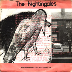 nightingales | urban ospreys
